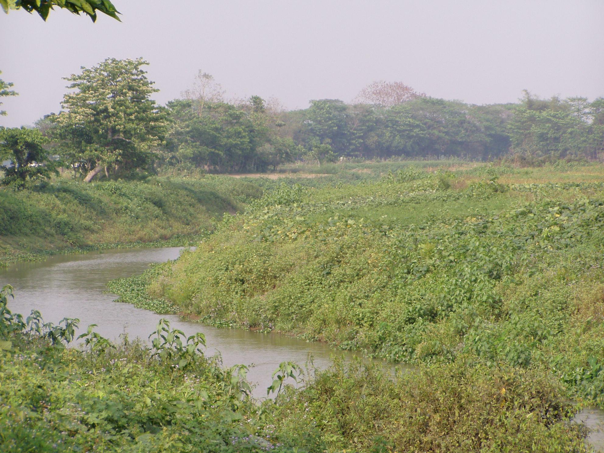 village  canal, Sylhet