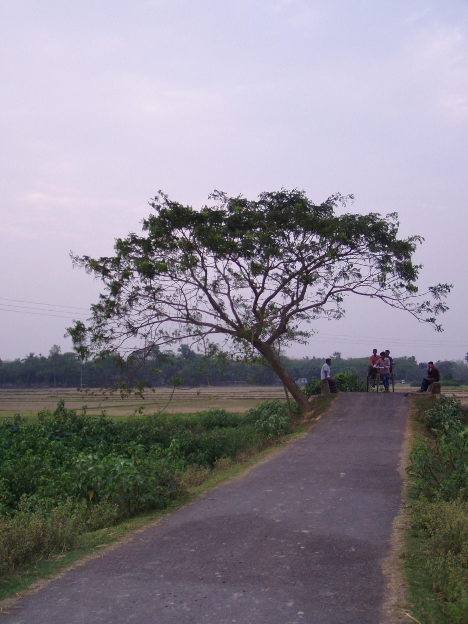 Local sylhet road