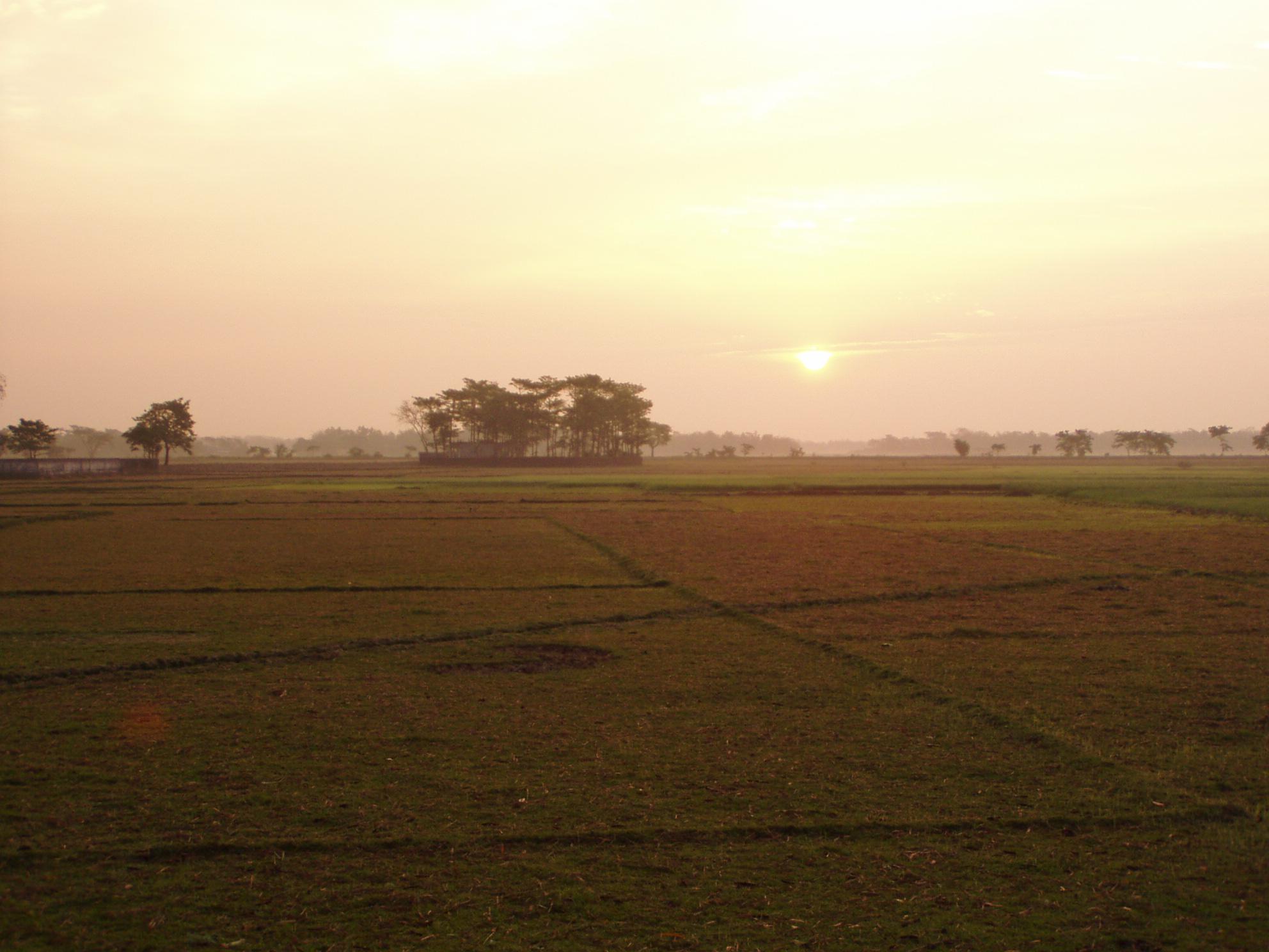 Bangladesh , Sylhet