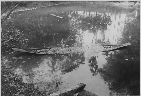 Boat & Pond